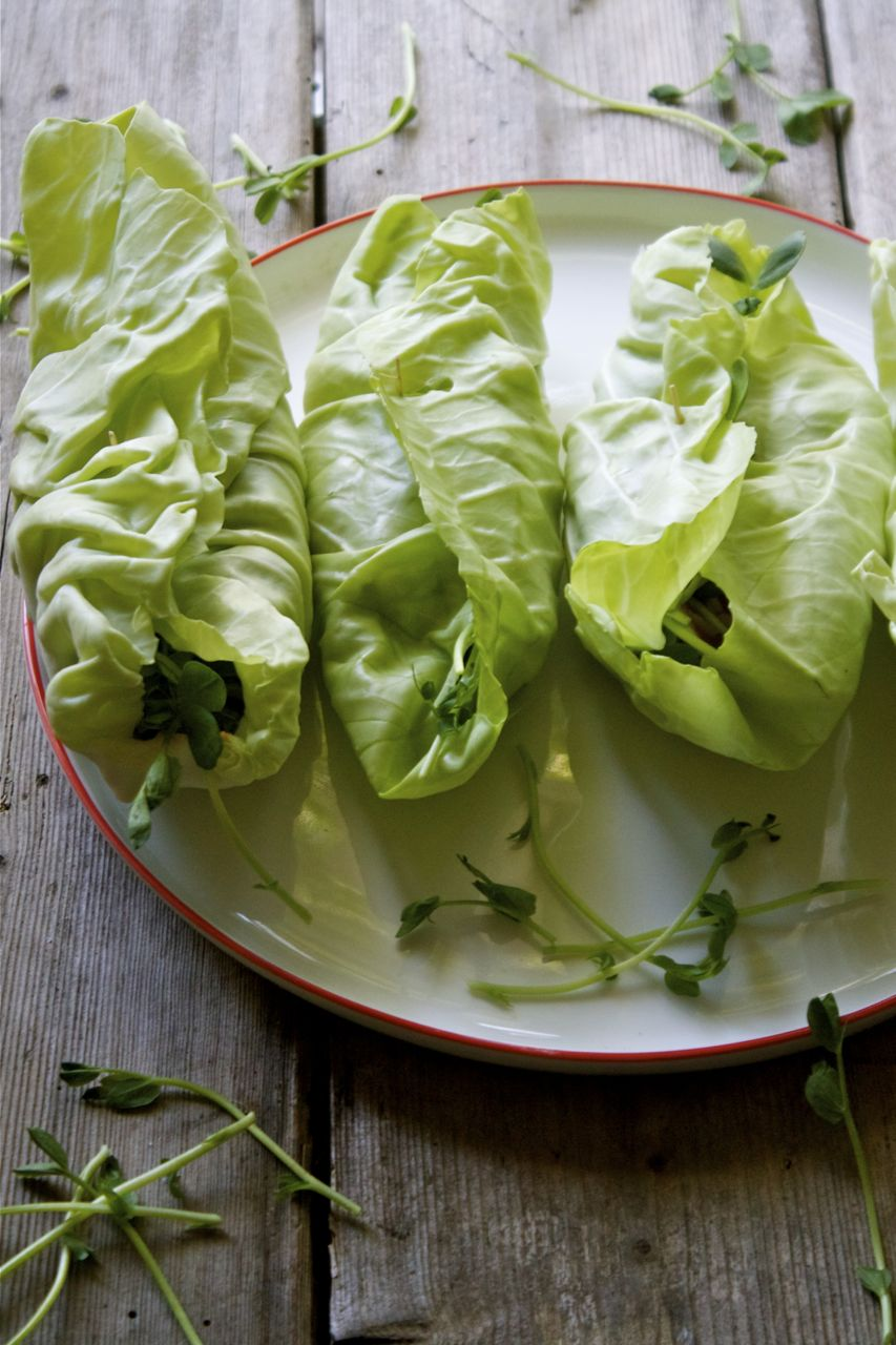 Raw Cabbage & Hummus Veggie Wraps | IPOM