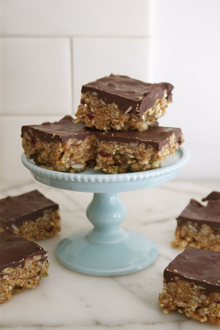 Nutty Cranberry Seed Bars with Dark Chocolate